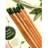 Sprout Pencil with Sage Seeds